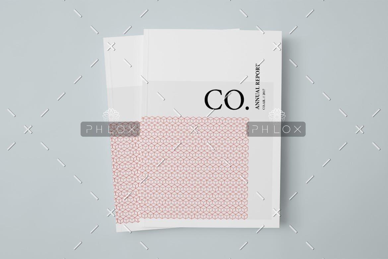CO.-Annual-Report-1
